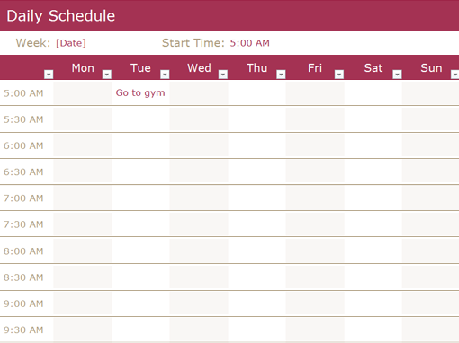 Daily Schedule Templates Word Templates Docs